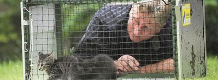 Roland Harder fängt seit zehn Jahren Katzen und ist Mitglied im Katzenschutzbund.Foto: Knut Vahlensieck / WAZ FotoPool